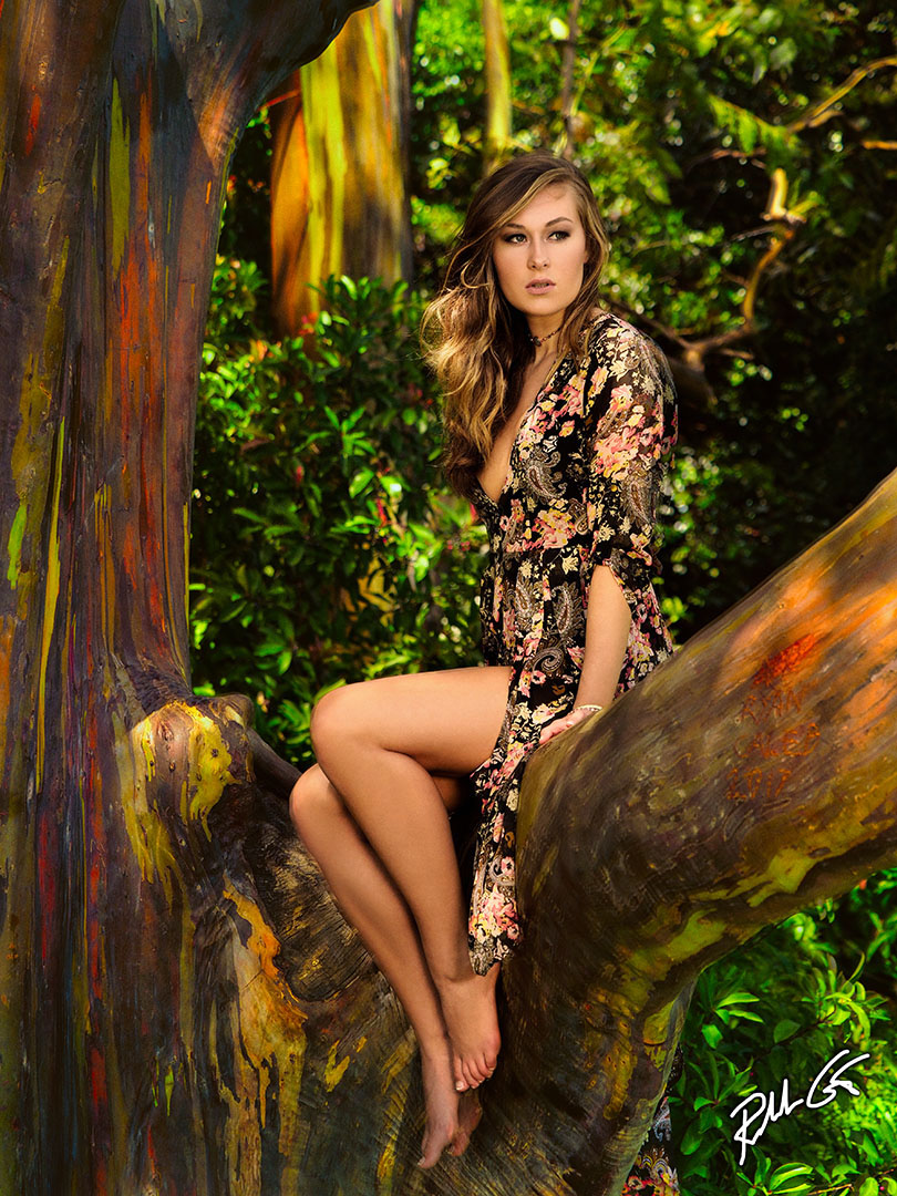 Painted Forest Maui Model Photo