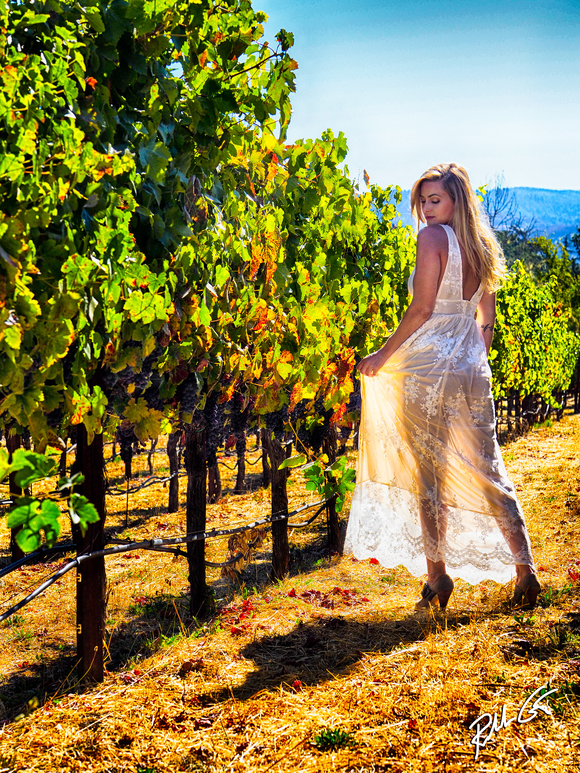 Sonoma Napa Models Wine Photography Adventure Workshop